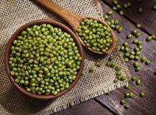 manfaat kacang hijau bagi ibu hamil