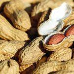manfaat-kacang-tanah-untuk-ibu-hamil
